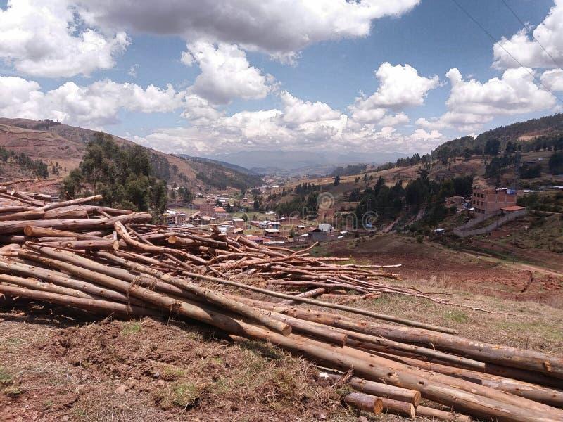 stammar av klippta träd som travas upp arkivfoto