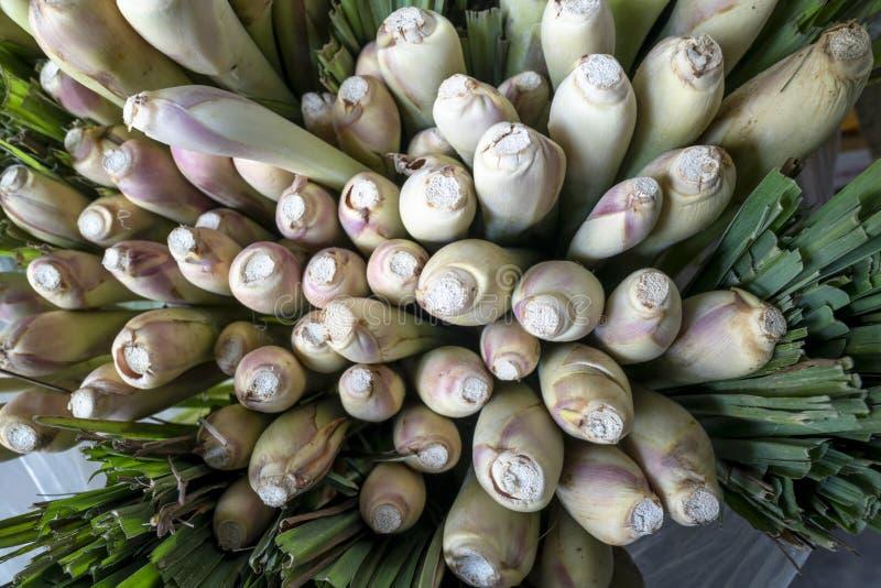Stammar av nytt skördad lemongrass i packar som visas på en grönsakshandlare, shoppar royaltyfria foton