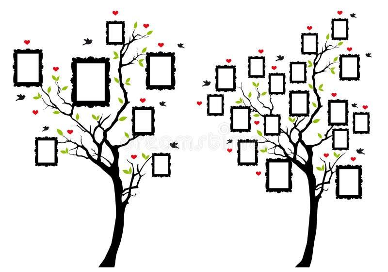 Stammbaum mit Fotorahmen, Vektor stock abbildung