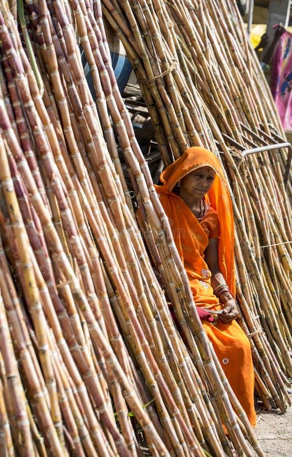 Stammendame verkopend suikerriet royalty-vrije stock fotografie