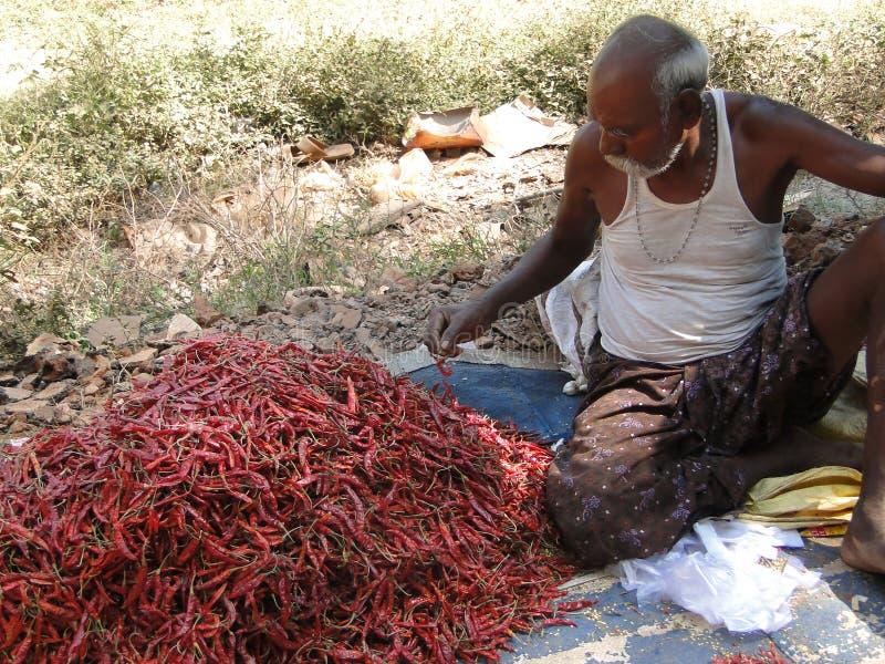 Stammes- Dorfbewohner verhandeln um Gemüse stockbilder