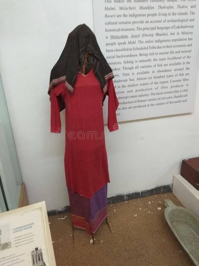 Stammes- Museum in Bhopal, Indien stockbild