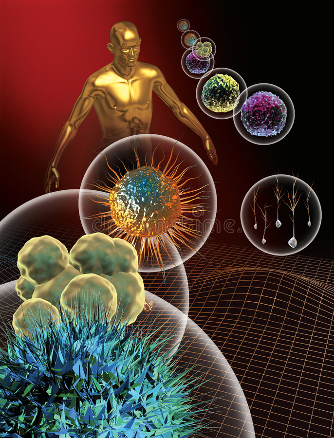 Stammzellen lizenzfreie abbildung