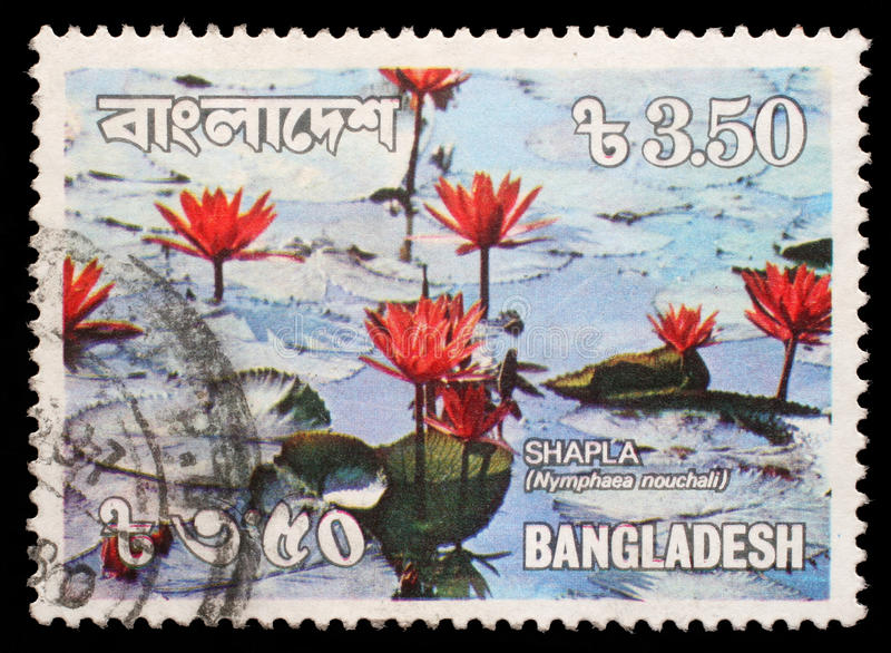 Stamp printed in Bangladesh shows water lilies royalty free stock photography