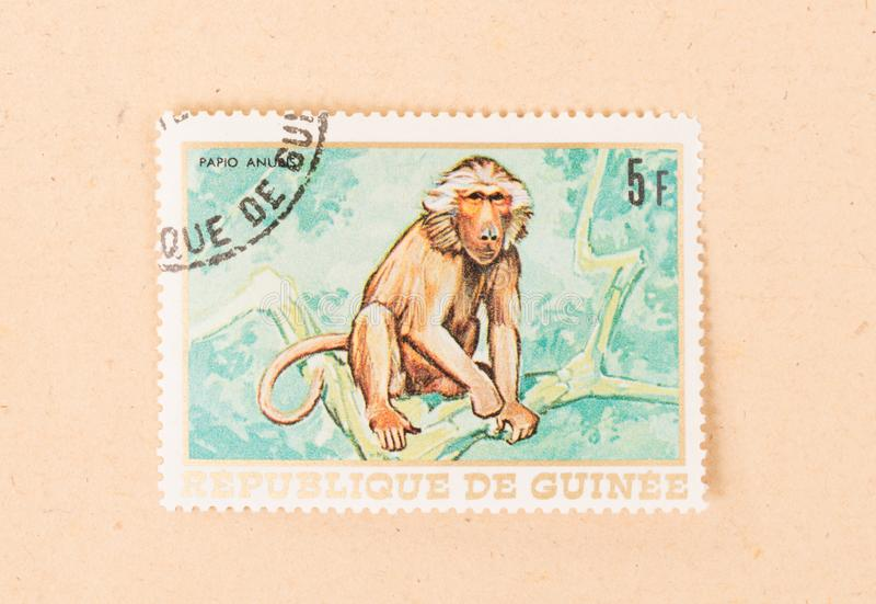 A stamp printed in Papua New Guinea shows a monkey, circa 1980. PAPUA NEW GUINEA - CIRCA 1980: A stamp printed in Papua New Guinea shows a monkey, circa 1980 stock images