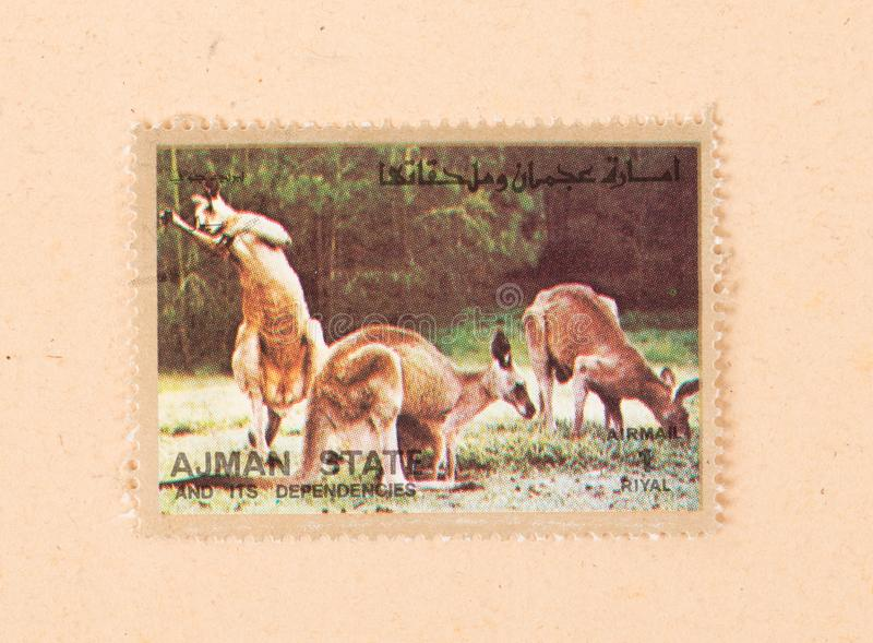 A stamp printed in the UAE shows kangaroes, circa 1980 stock images