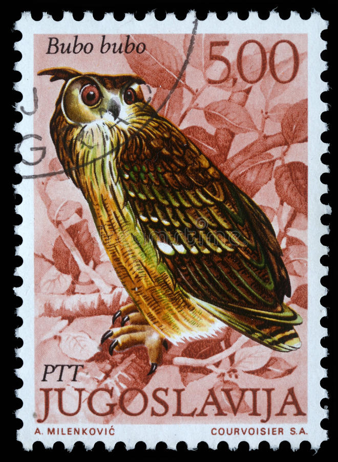 Stamp printed in Yugoslavia shows the European Eagle Owl. With the inscription `Bubu bubo` from the series `Fauna`, circa 1980 stock photo