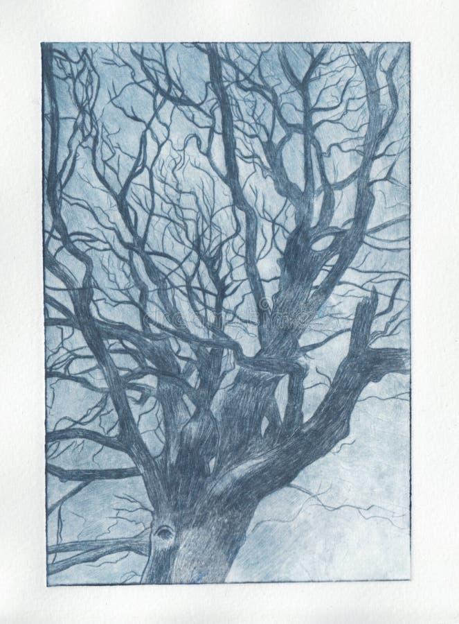Stampa blu dell'albero royalty illustrazione gratis