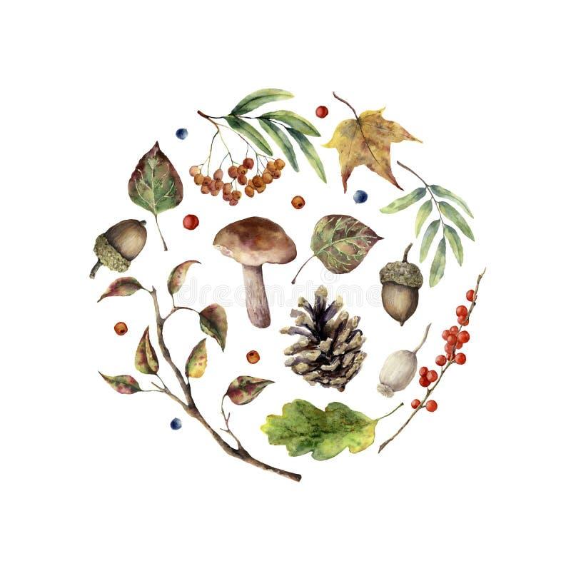 Stampa di autunno dell'acquerello Fungo, sorba, foglie di caduta, ramo di albero, pigna, bacca dipinta a mano e ghianda isolati s illustrazione di stock