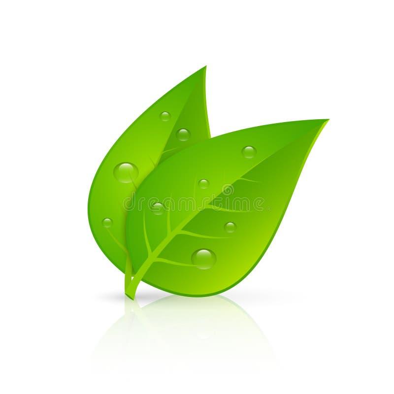 Stampa realistica di immagine delle foglie verdi illustrazione di stock