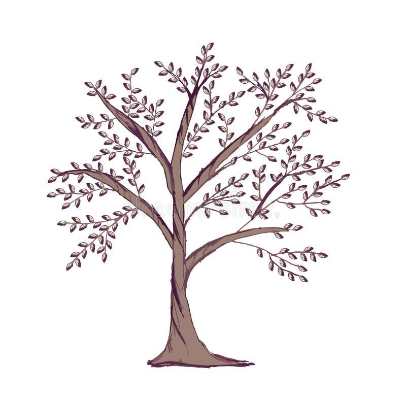 Stamträdmall som isoleras på vit bakgrund För trädkontur för hand utdragen logo royaltyfri illustrationer