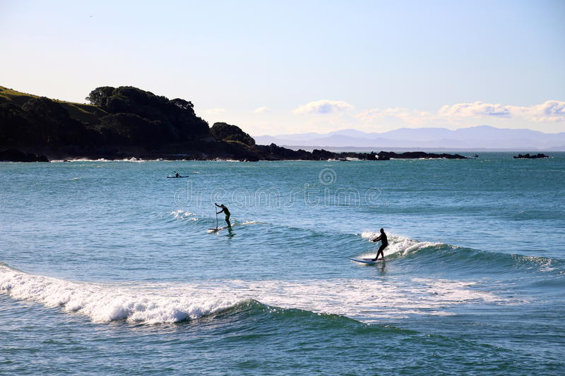 Stand up paddle board sunset. Stand up paddle board New Zealand royalty free stock photography