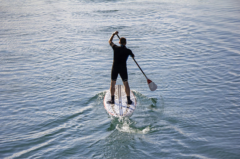 Stand up paddle boarder royalty free stock photo