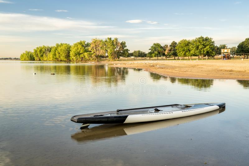Stand up paddleboard  on beach. Stand up paddleboard with a paddle and safety leash on a beach at Boyd Lake State Park, Colorado stock images