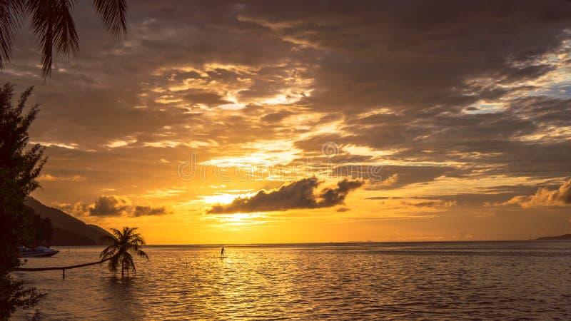 Stand up paddler SUP on Sunset, Kri Island. Raja Ampat, Indonesia, West Papua.  royalty free stock photo