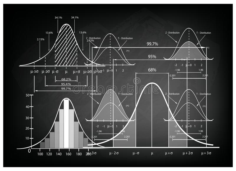 Standard Deviation Diagram with Sample Size Chart. Business and Marketing Concepts, Illustration of Standard Deviation Diagram, Gaussian Bell or Normal royalty free illustration
