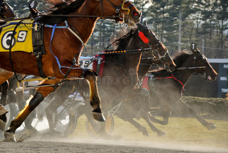 Standardbred Horse Race. Action shot from January 28th, race 9 at Freehold Raceway in Freehold, New Jersey royalty free stock image