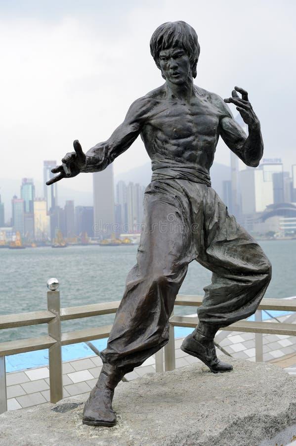 Standbeeld van Bruce Lee royalty-vrije stock afbeeldingen
