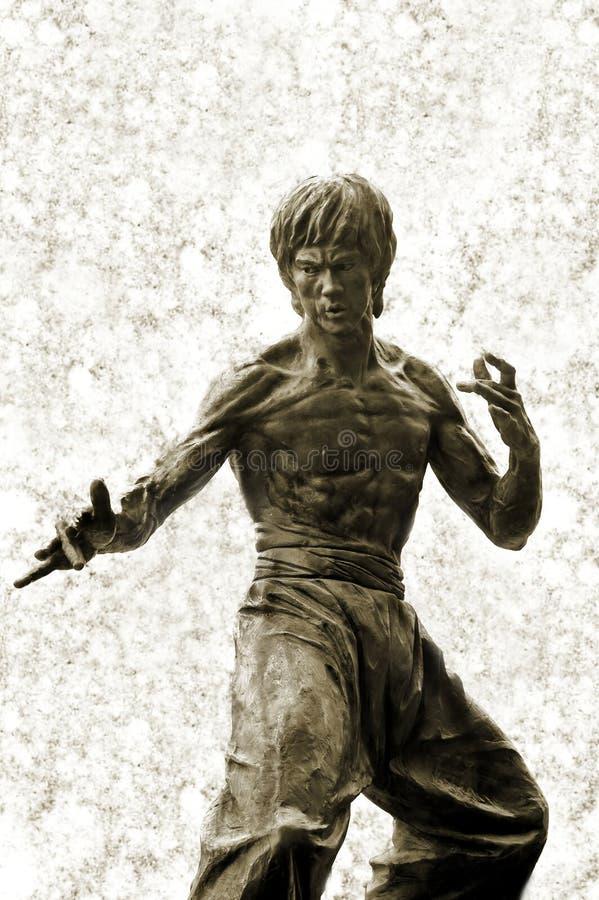 Standbeeld van Bruce Lee stock foto