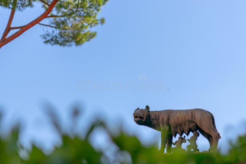 Standbeeld van Capitoline-wolf die Romulus en Remus in Rome voeden, Ita stock fotografie