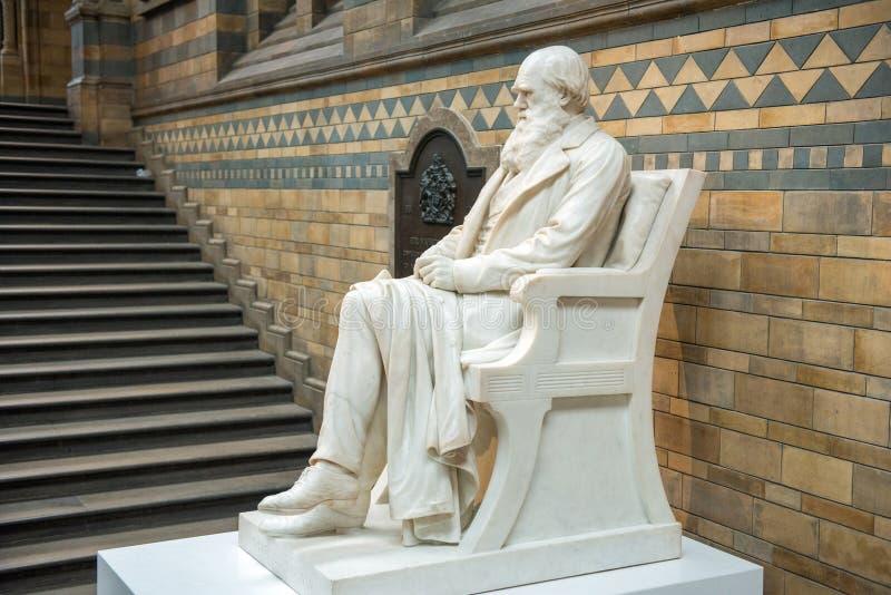 Standbeeld van Charles Darwin in Biologiemuseum, Londen stock foto