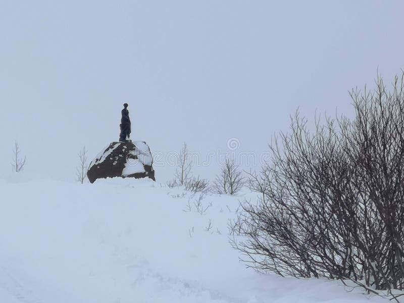 Standbeeld van het de sneeuwonweer van het de winter het minimalistische landschap stock fotografie