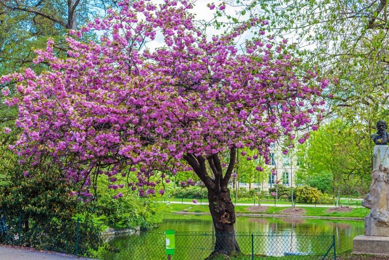 Standbeeld van Valade in Jardin botanique royalty-vrije stock foto