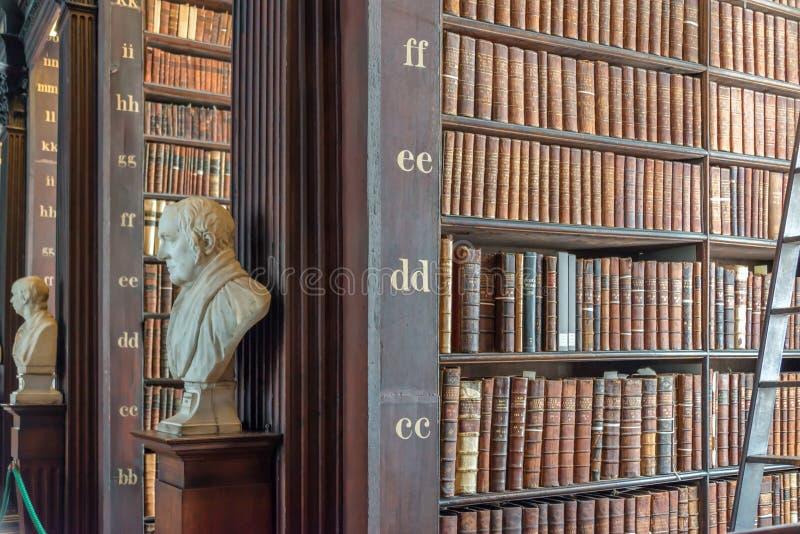 Standbeelden en boekenrekken in de Lange Zaal in de Oude Bibliotheek van de Drievuldigheidsuniversiteit in Dublin Ireland royalty-vrije stock foto