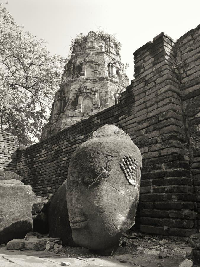 Standbeeldhoofd in de tempelruïnes Ayutthaya van Thailand stock afbeelding