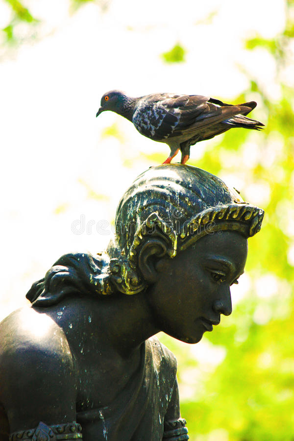 Download Standbeeldo Vrouw Met Vogel Stock Foto - Afbeelding bestaande uit giet, standbeeld: 39118178