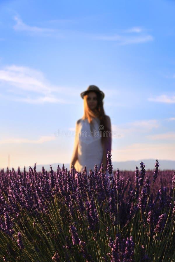 Standing Behind Lavenders stock image