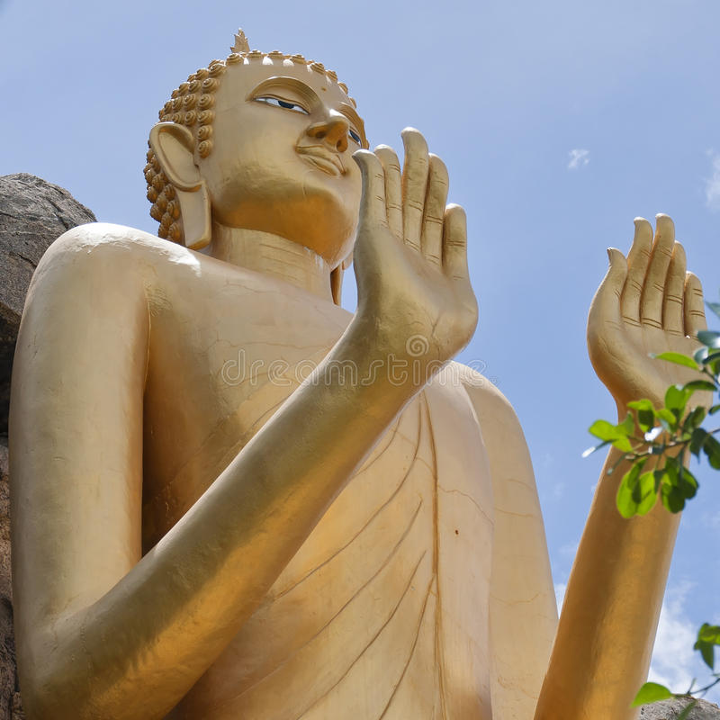 Free Standing Buddha 09 Royalty Free Stock Images - 25029569