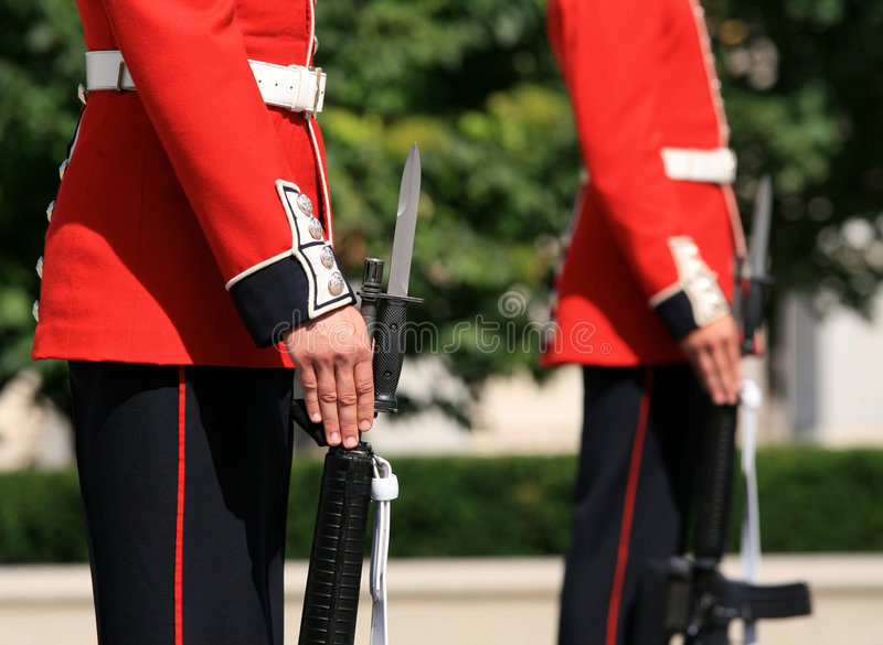 Download Standing Guard stock image. Image of capital, outdoors - 3153079