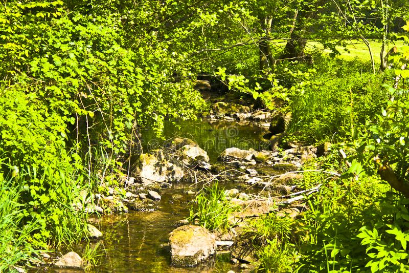 Standing small Bavarian river in spring at sunshine stock image