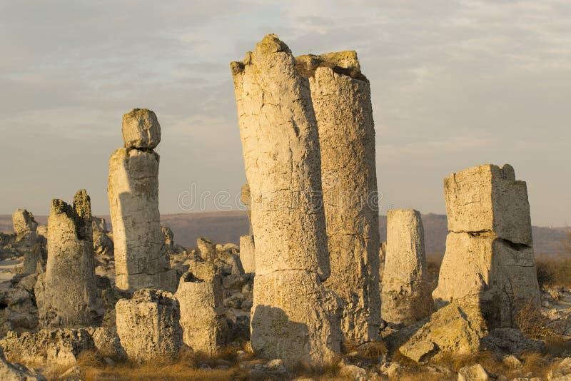 Standing Stones natural phenomenon. Pobiti kamani in Bulgaria stock images