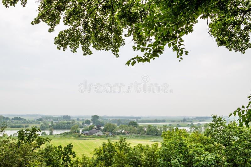 Standpunktfluß Rhein vom Arboretum in Wageningen Netherlan stockbild