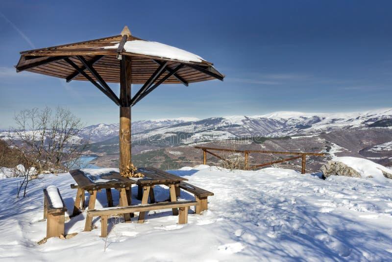 Standpunt geroepen Geitrots op Oude berg in Servië royalty-vrije stock foto's