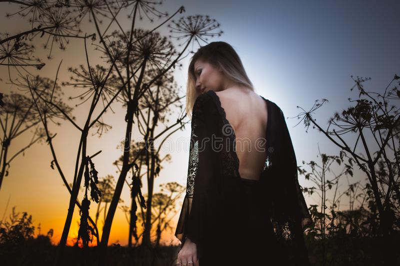 Beautiful witch with open back at sunset stands in tall grass stock image