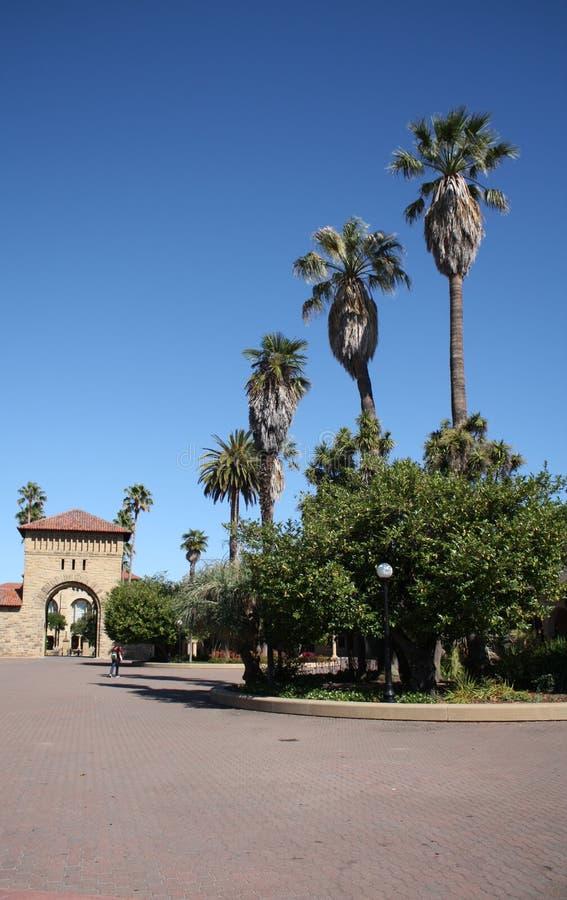 Stanford-universitetwalkway royaltyfri fotografi
