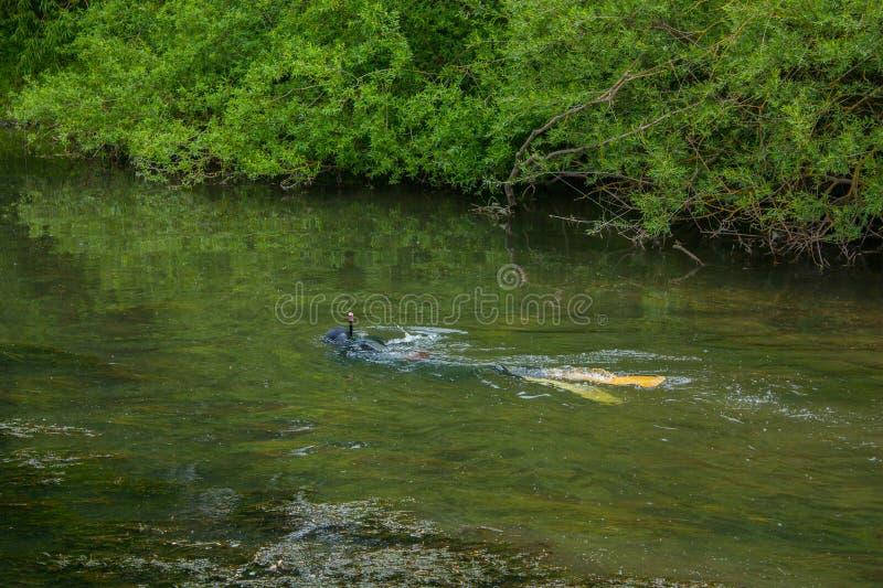 Stangenfischen in einem flachen Fluss lizenzfreies stockfoto
