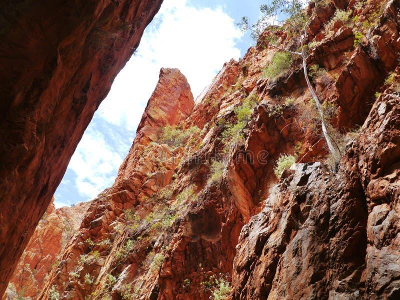 Stanley chasm stock photos
