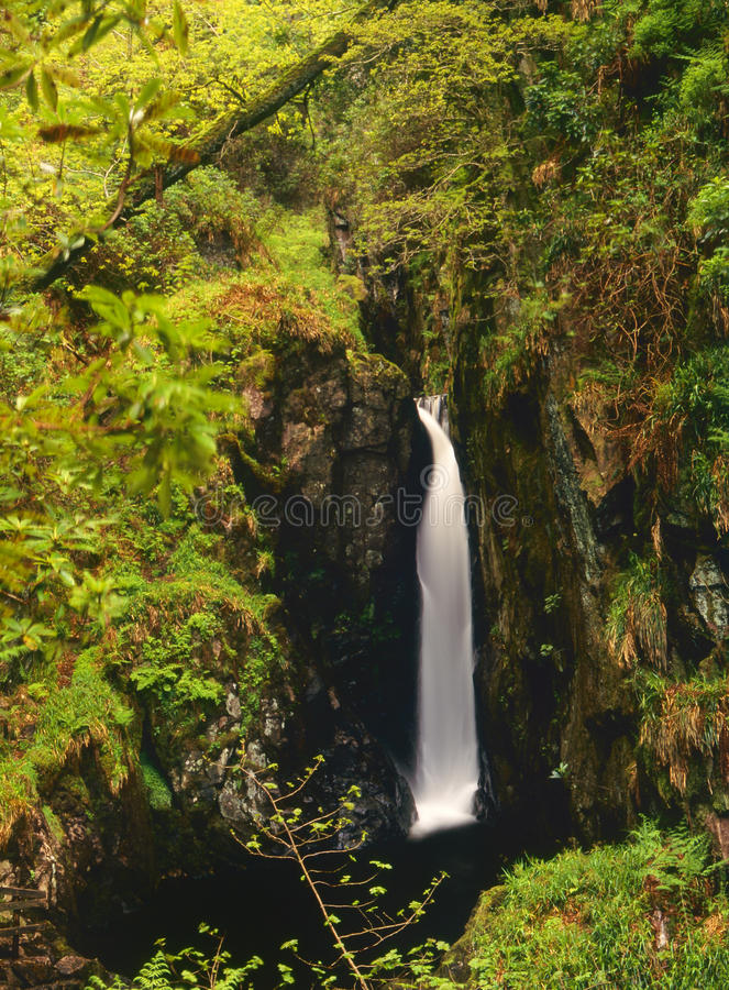 Free Stanley Ghyll Force, Eskdale, Cumbria Royalty Free Stock Images - 23315819