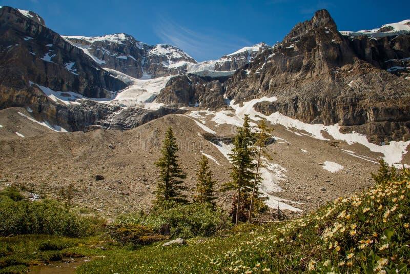 Stanley Glacier en Yoho National Park, Canadá imagen de archivo libre de regalías