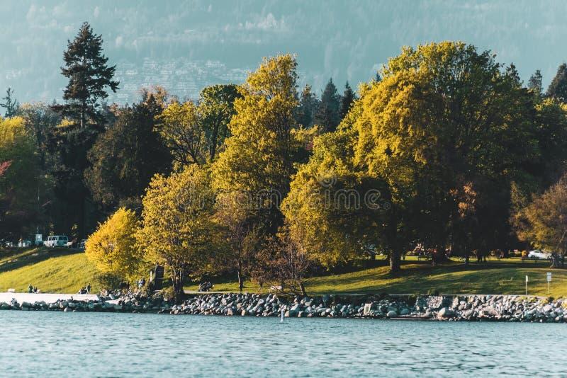 Stanley Park-Ansicht von der englischen Bucht in Vancouver BC Kanada stockbilder