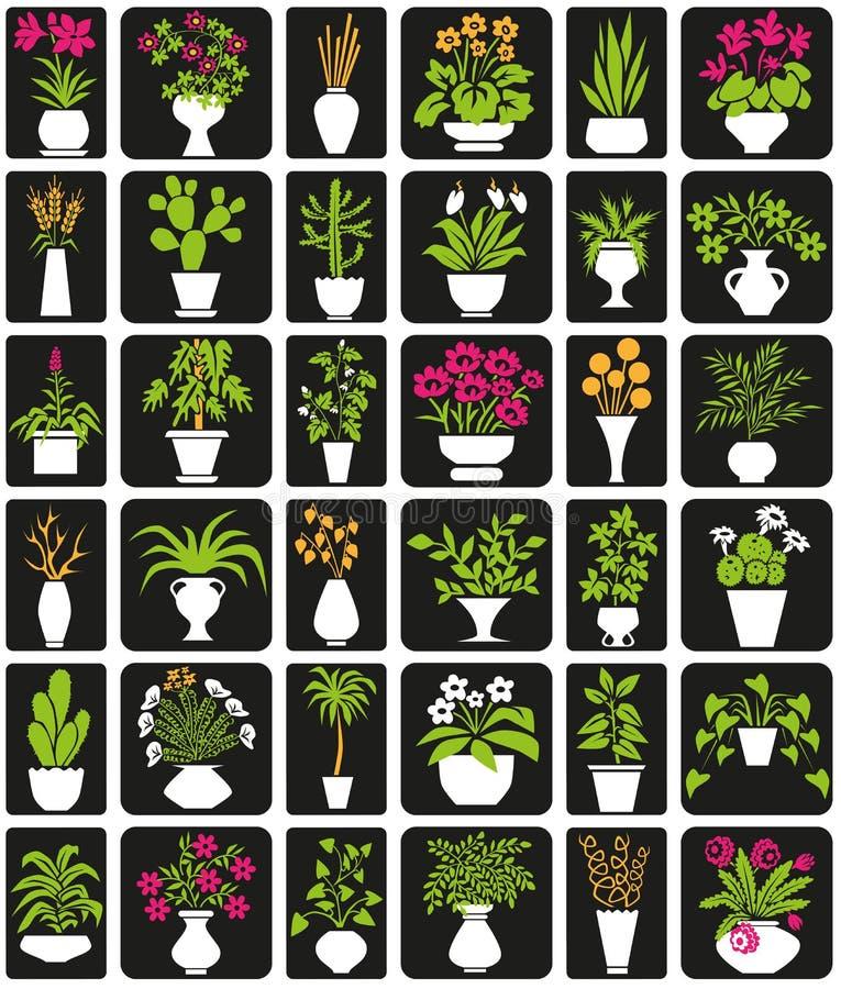 stanu gdzie ma wbić roślin ilustracji