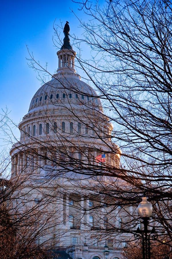 Stany Zjednoczone Capitol, usa zdjęcia royalty free