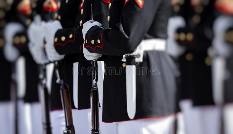 Stany Zjednoczone korpusy piechoty morskiej obrazy stock