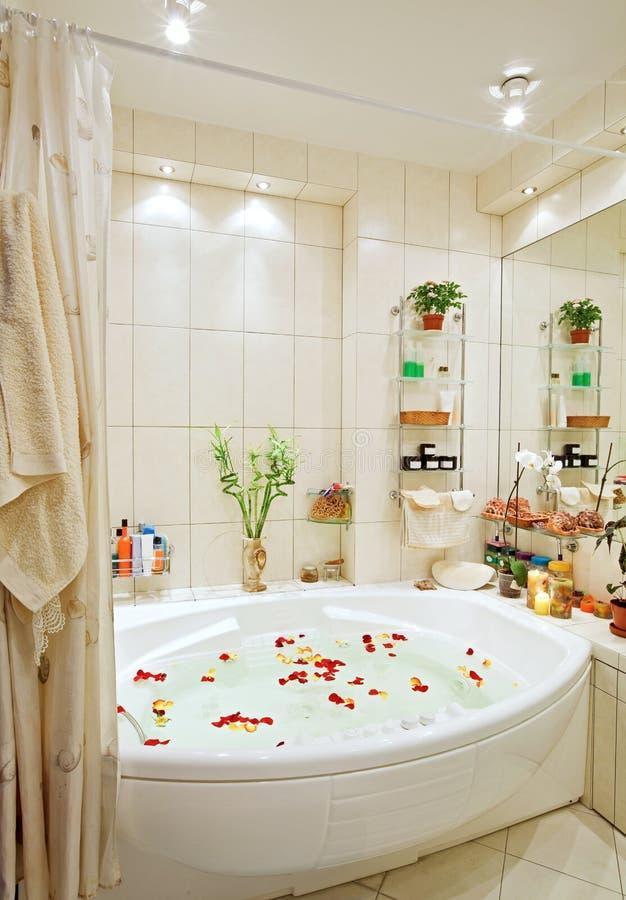 Stanza da bagno moderna nei toni caldi con la Jacuzzi fotografia stock libera da diritti