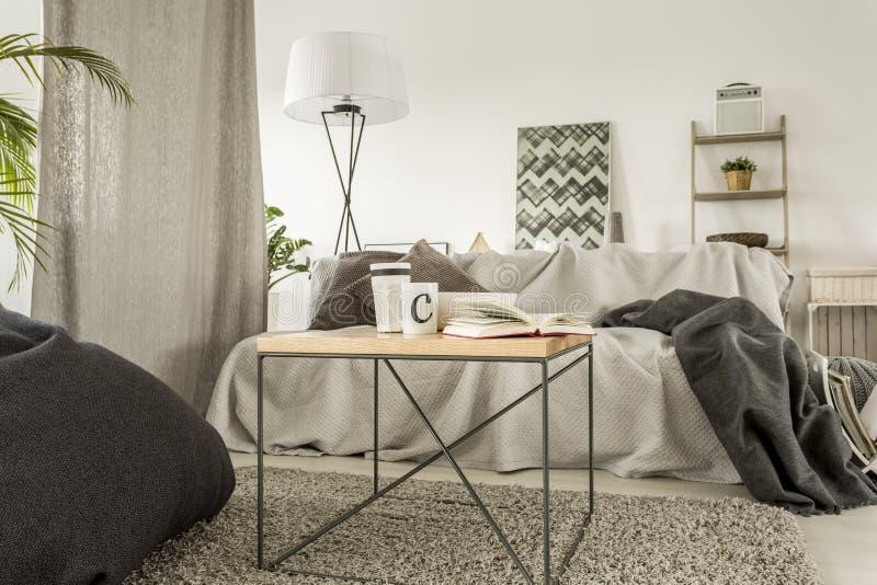 Stanza luminosa con il sofà immagine stock