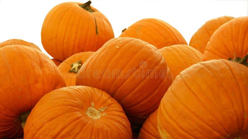 Download Stapel 2 Van Pumpking Wit BG Stock Foto - Afbeelding bestaande uit mellon, angst: 275494
